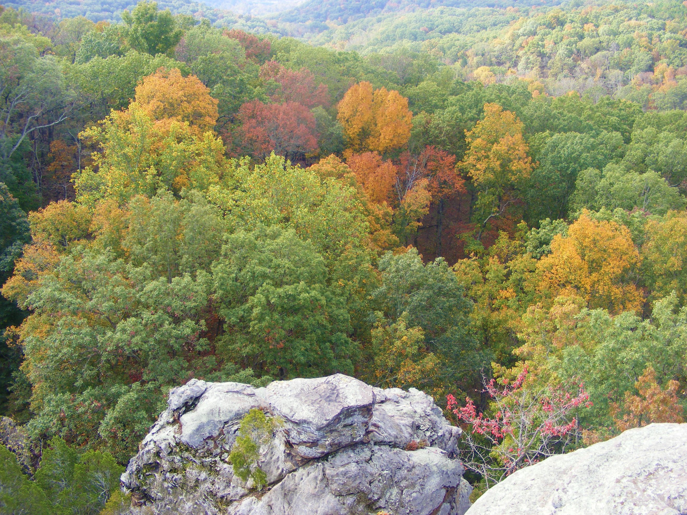 Fall at Garden of the Gods, Southern Illinois Shawnee