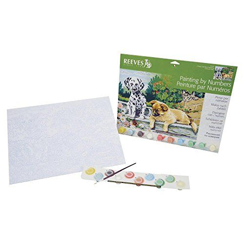 reeves painting by numbers dogs reeves paint kit for adults and kids