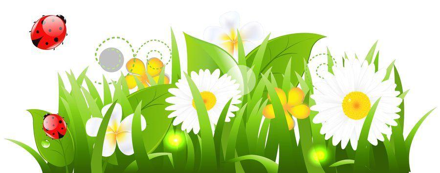 Astronomiczna wiosna – Ozdoby: Konewka | Flowers, Clip art, Flower art