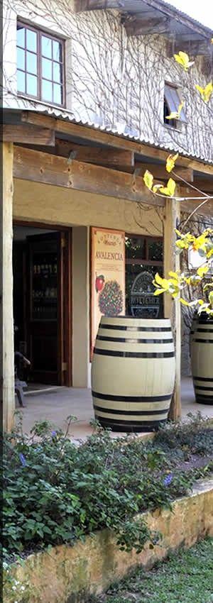 Photography - Website Clients  - Rottcher Wineries @ Casterbridge Wellness Centre White River
