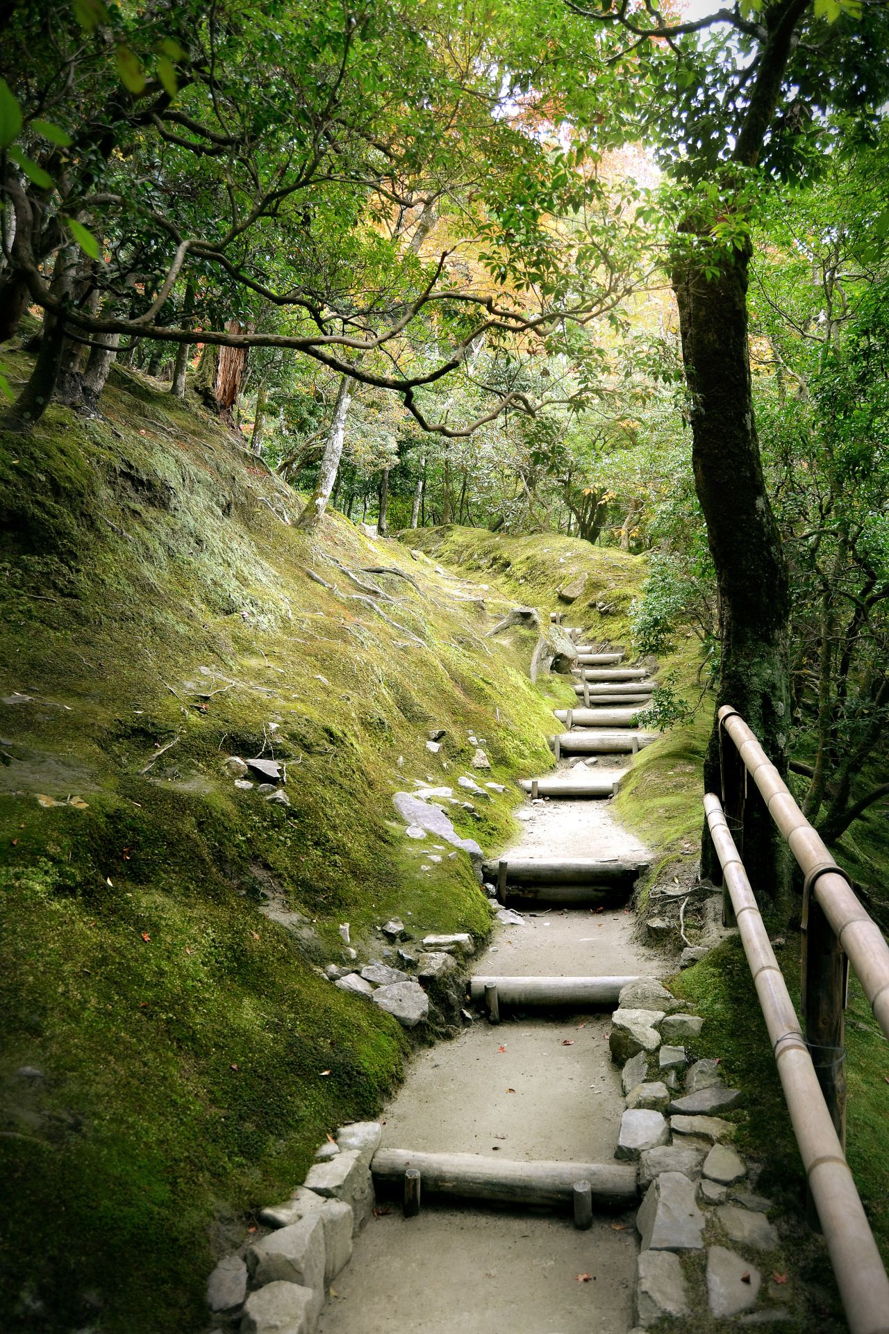 b-no-photo-stuff:  - A path in the forest - Somewhere in Kyoto - 2014 -