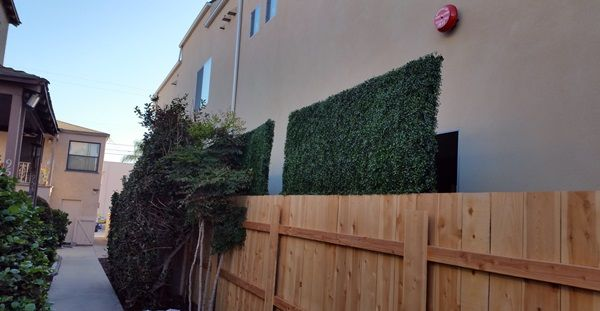 Fence Extensions For Backyard Privacy Backyard Decor