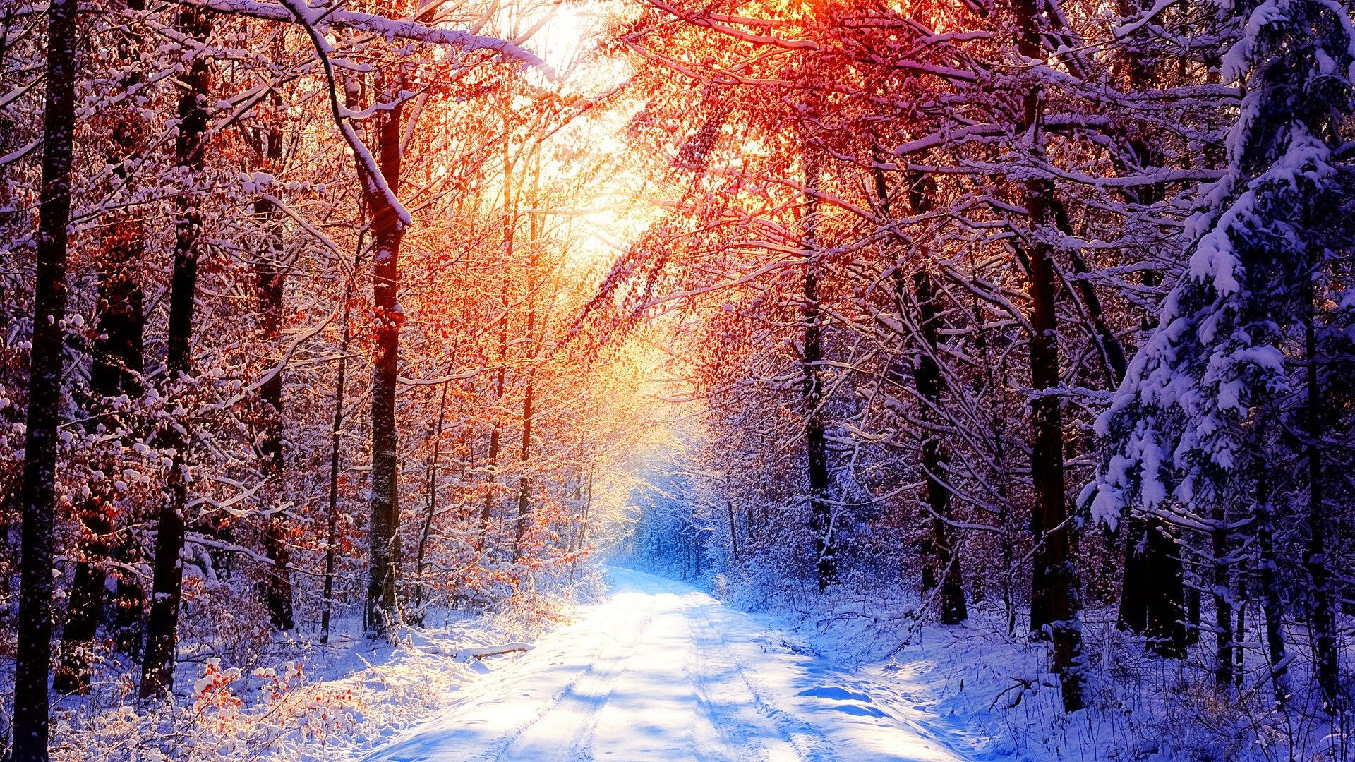 Hd Nature Winter Wallpaper Backgrounds 1920x1080 Zimnie Sceny Zimnij Zakat Pejzazhi