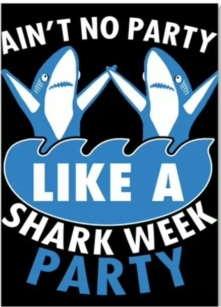 July 23rd 2017 Shark Shark Pictures Shark Week