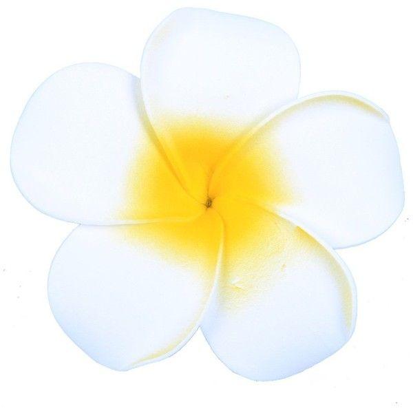 Anleolife 6pcs Lot Ashion Mixed Color Fabulous Plumeria Flowers Foam Hawaii Frangipani F Bridal Hair Accessories Flower Bridal Hair Flower Clip Flowers In Hair