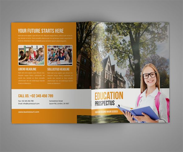 14+ Free PSD Education Brochure Template Designs Brochures - free tri fold brochure templates word