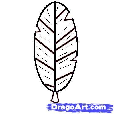 How to Draw a Feather for Kids, Step by Step, Cartoons For ...