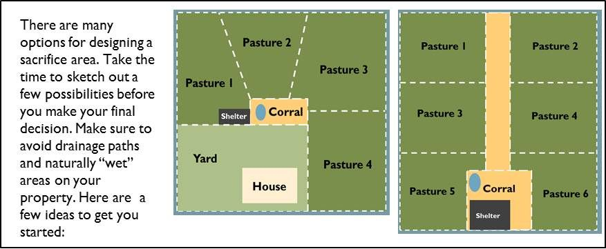 Rotational Grazing Plan Country Life Dreams Pinterest
