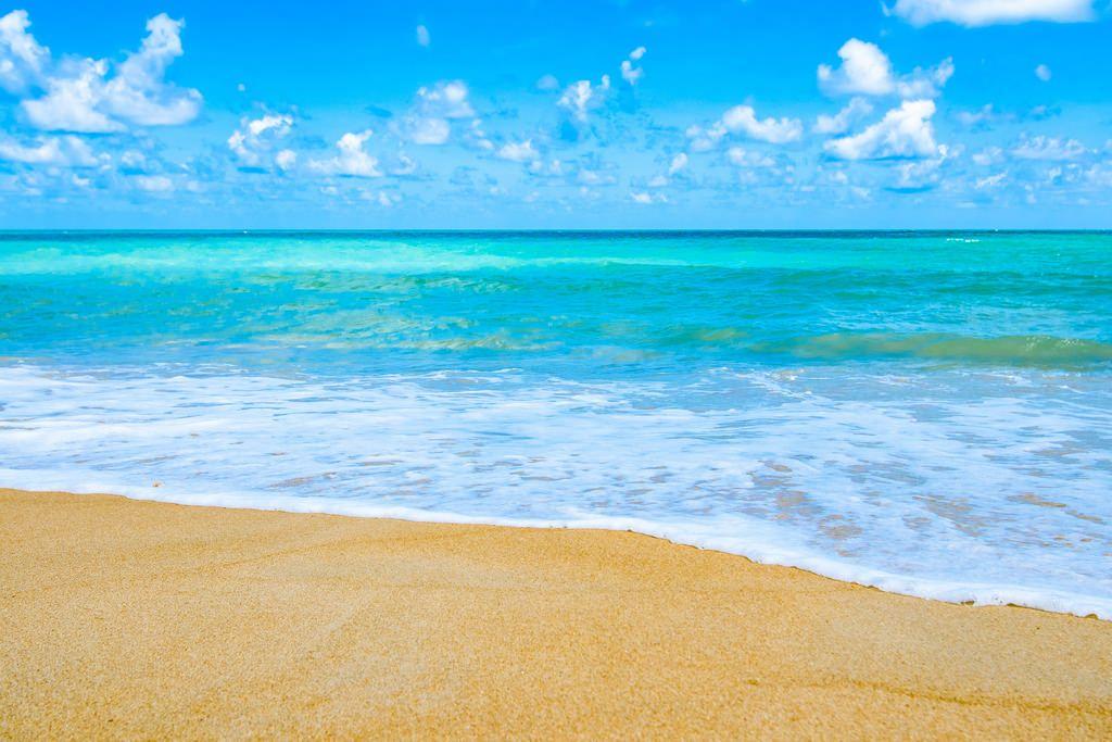 Beautiful Andaman Beach Hd Wallpaper Beach Pictures Beautiful Beaches Summer Beach Pictures