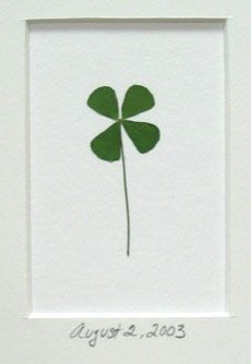 3ebe3a01ab3 Frame a little luck! This authentic pressed four leaf clover is a great  gift idea for a new home