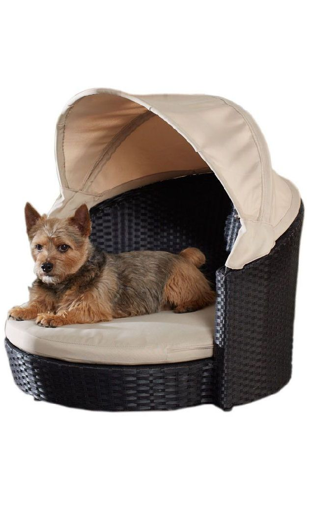 Outdoor Dog Canopy Bed With Images Outdoor Pet Bed Dog Canopy