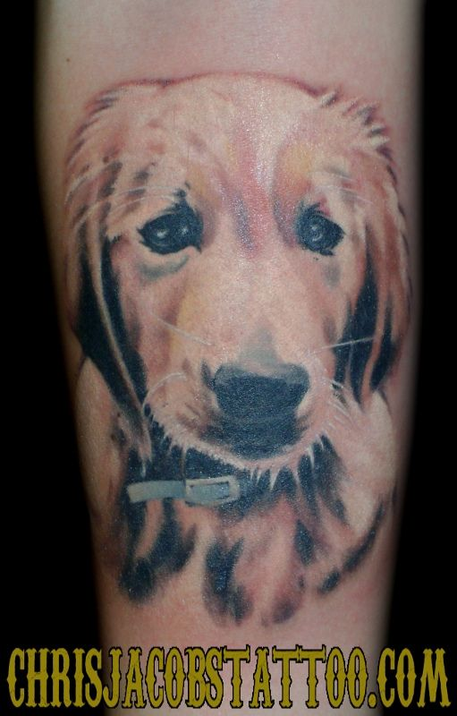 Golden Retriever Dog Portrait Tattoo By Chris Jacobs The Trainyard