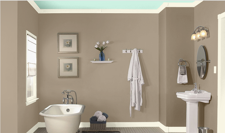 Bathroom Wall Color, Sea Lilly By Valspar.