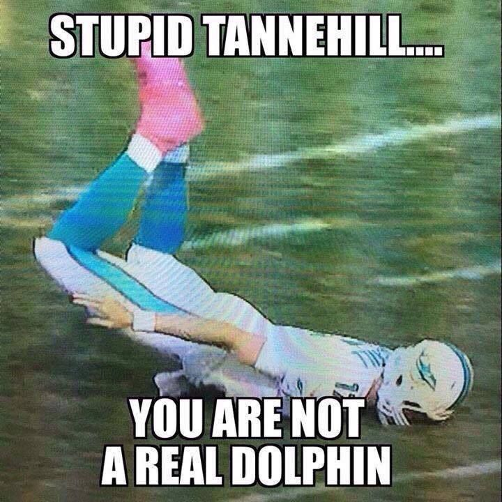 f86bd07244c6bf604706fbf0c8a6b822 tannehill trying to be a dolphin nfl memes pinterest