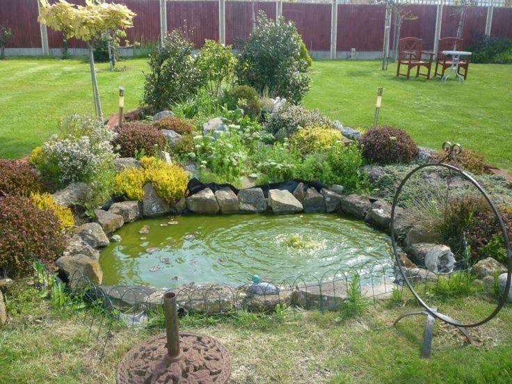 Gardening Time Backyard Farming Ponds Backyard Duck Pond