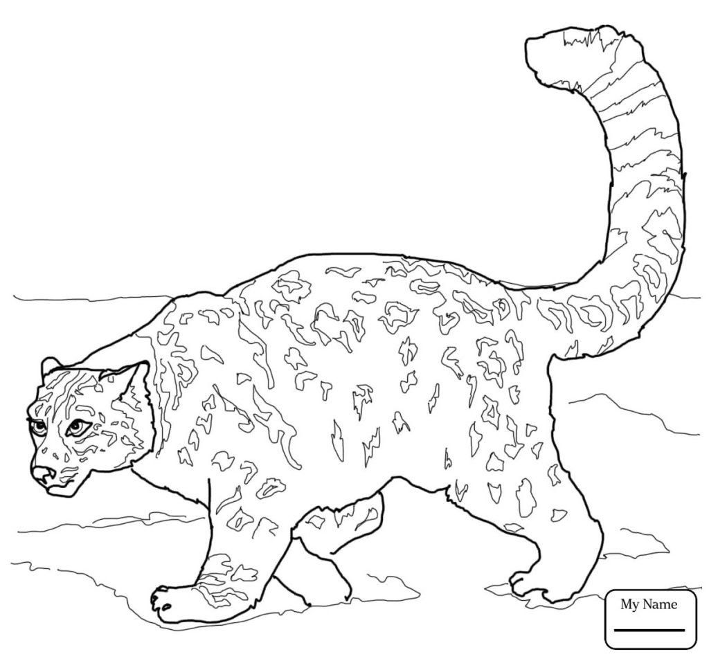 28 Beautiful Animal Jam Coloring Pages in 2020 (With ...