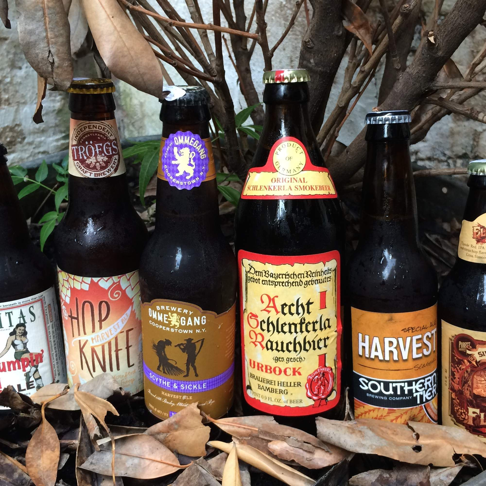 Stop drinking summer beers right now. THE 15 BEST BEERS TO DRINK THIS FALL  via Thrillist