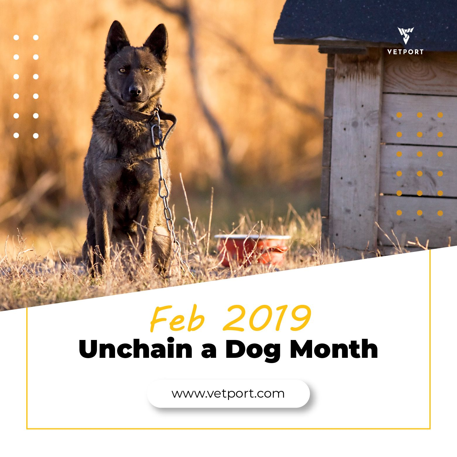 Unchain a Dog Month February 2019 TuesdayMotivation