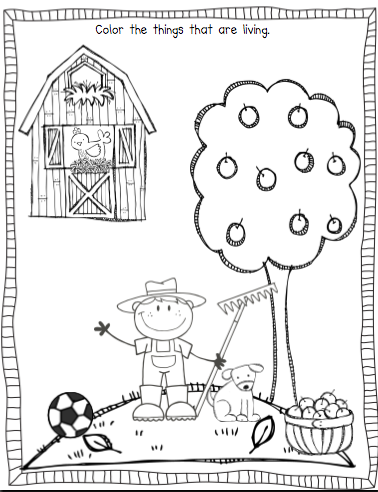 math worksheet : sarahu0027s first grade snippets living and nonliving pinteres  : Living Things Worksheet For Kindergarten