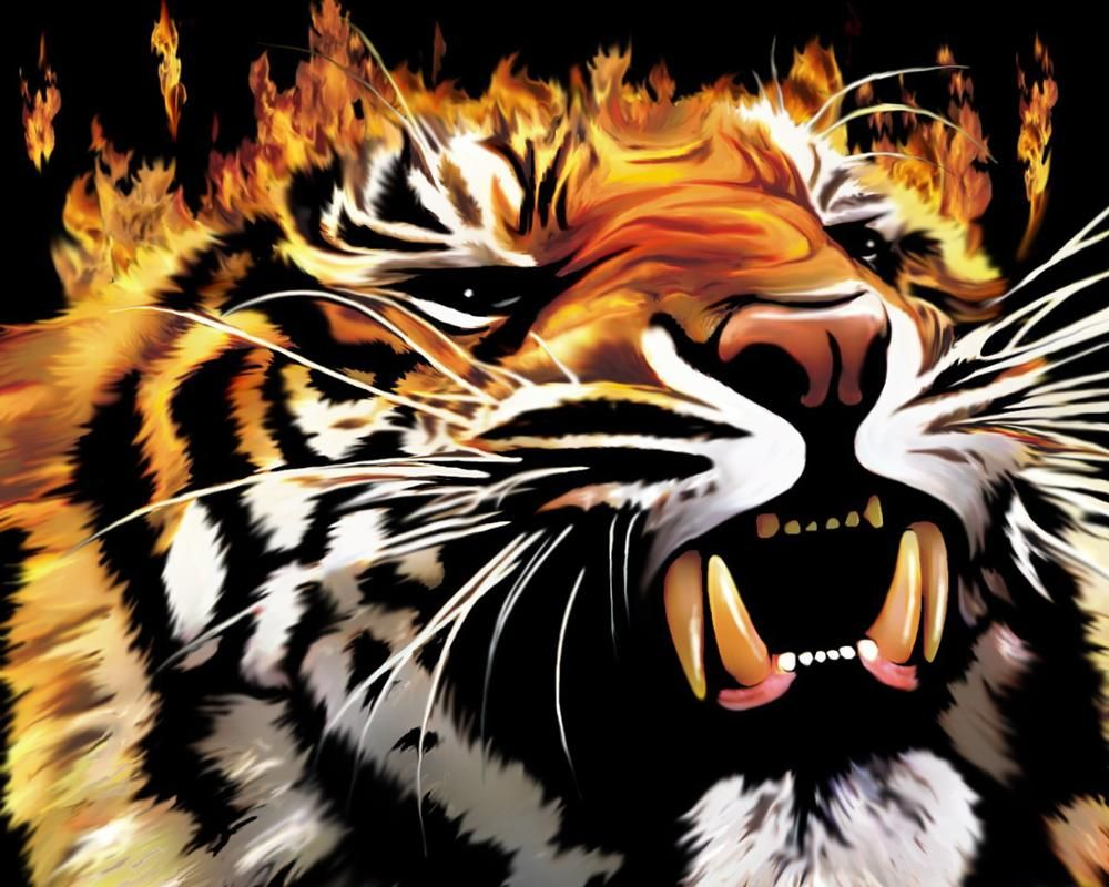 Font B Tiger Fire Flame Grin Home Decoration