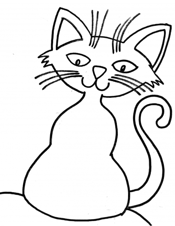 Cat 6 E