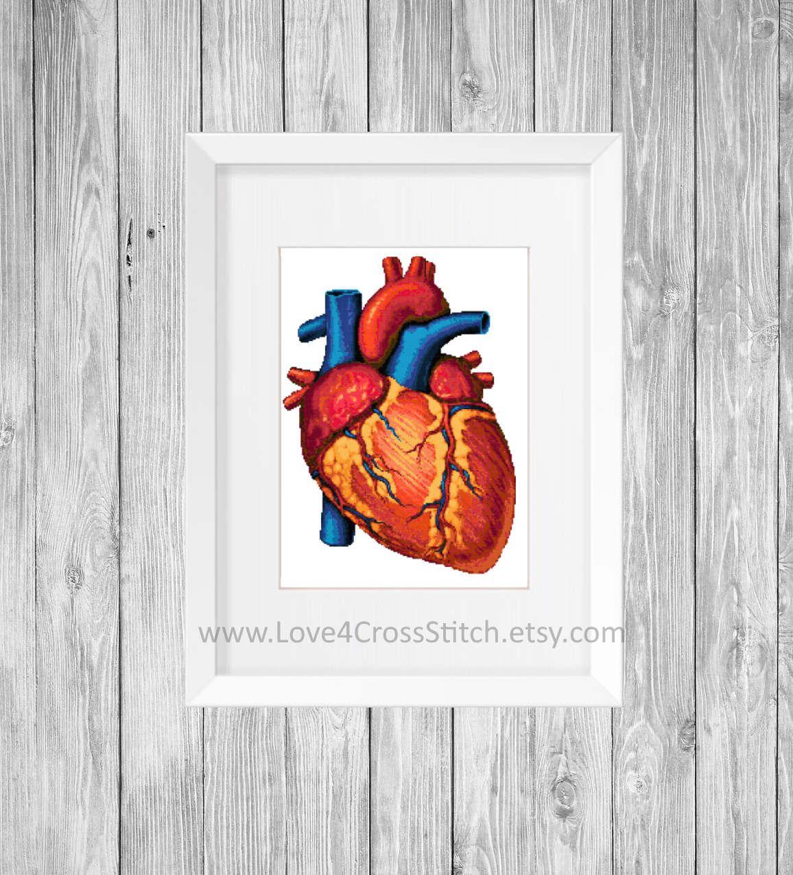 Human Heart Cross Stitch Pattern Modern, Anatomy Cross Stitch ...
