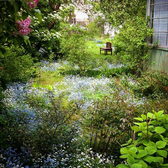 Secret Garden #field #flowers #nature In The #city #spring #time
