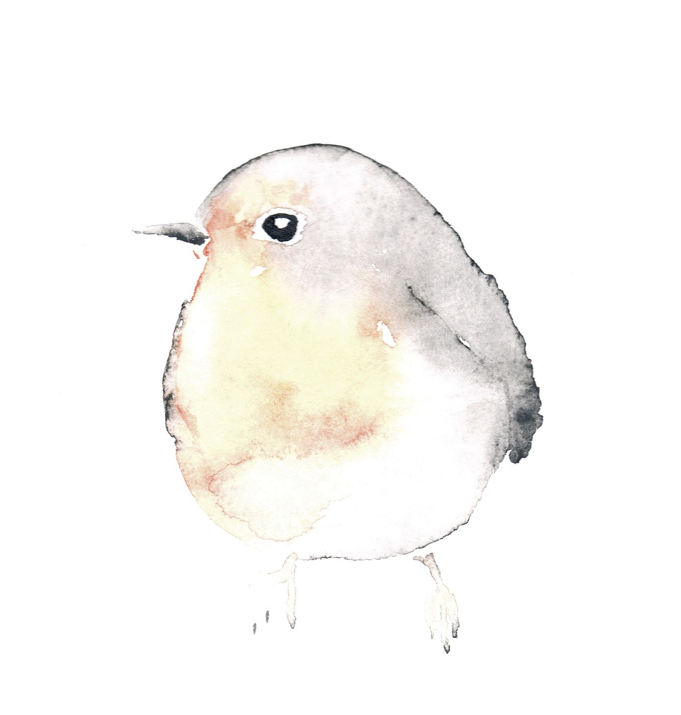 Watercolor Sparrow Spatz Aquarell Dawanda Illustration