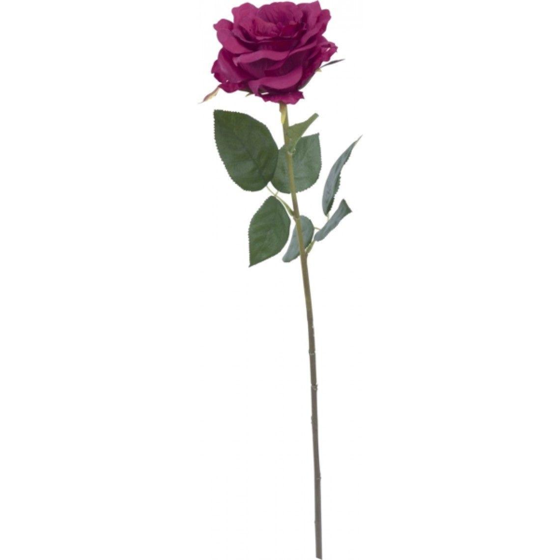 Tekokukka Ruusu korkeus 63 cm