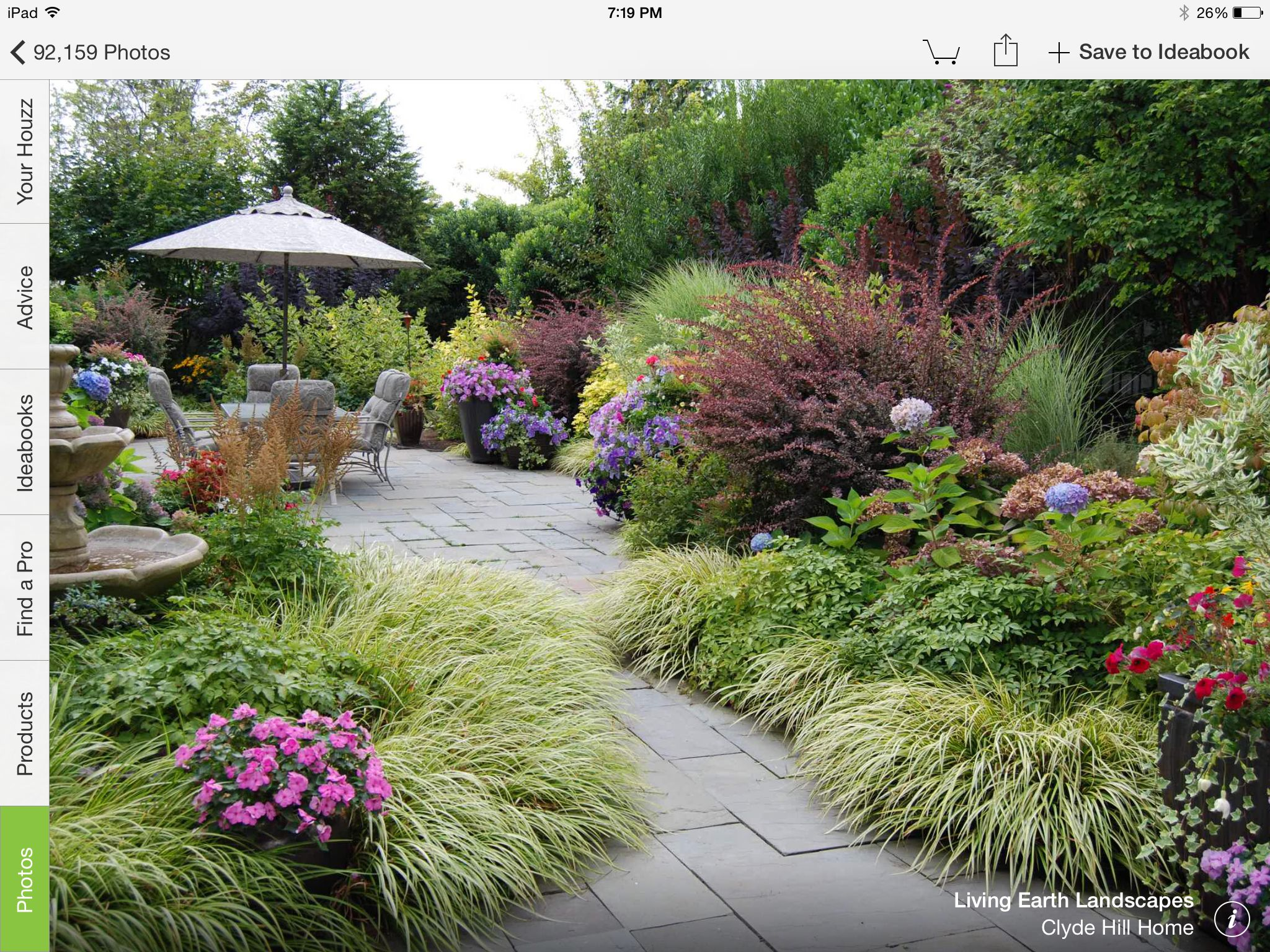 Landscaping W/ Barberry Bushes (Clyde Hill Home). Like These W/ Grasses,  Joe Pye Weed, Petunias :)