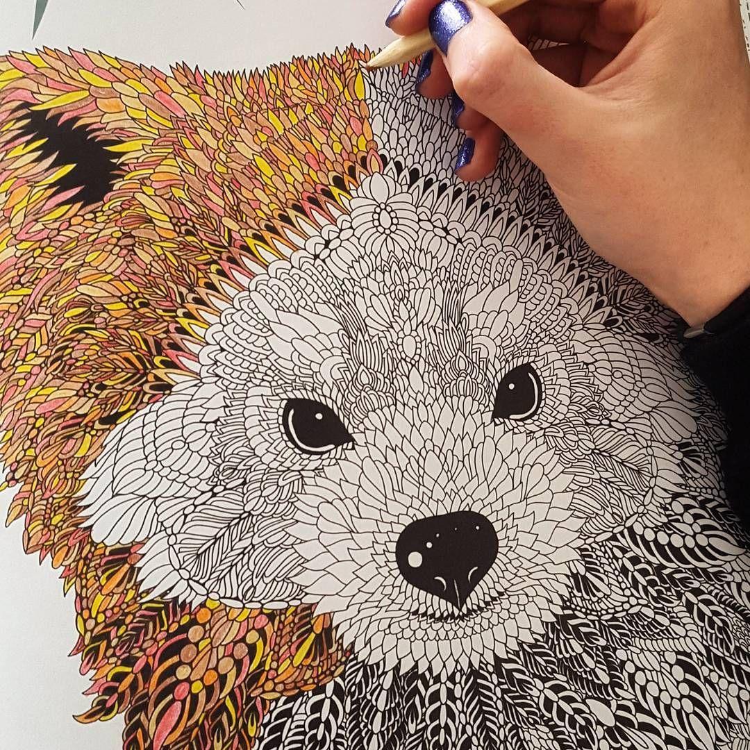 Laura Jane On Instagram 28 02 2016 I Love This I M Such A Child When It Comes To Colouring I Love It Too Much Kleurboek Dieren Tekenen Kleurplaten