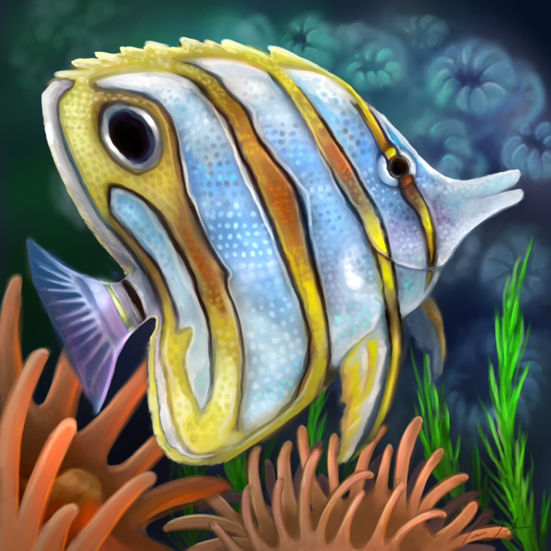 Layer paint tropical copperband butterfly fish by charfade for Fish tank paint
