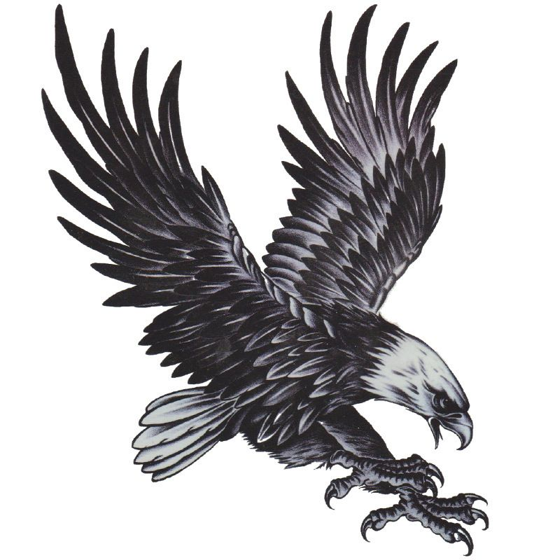 Pin by glenn duncan on tattoos to do pinterest tattoo for Eagle wings tattoo