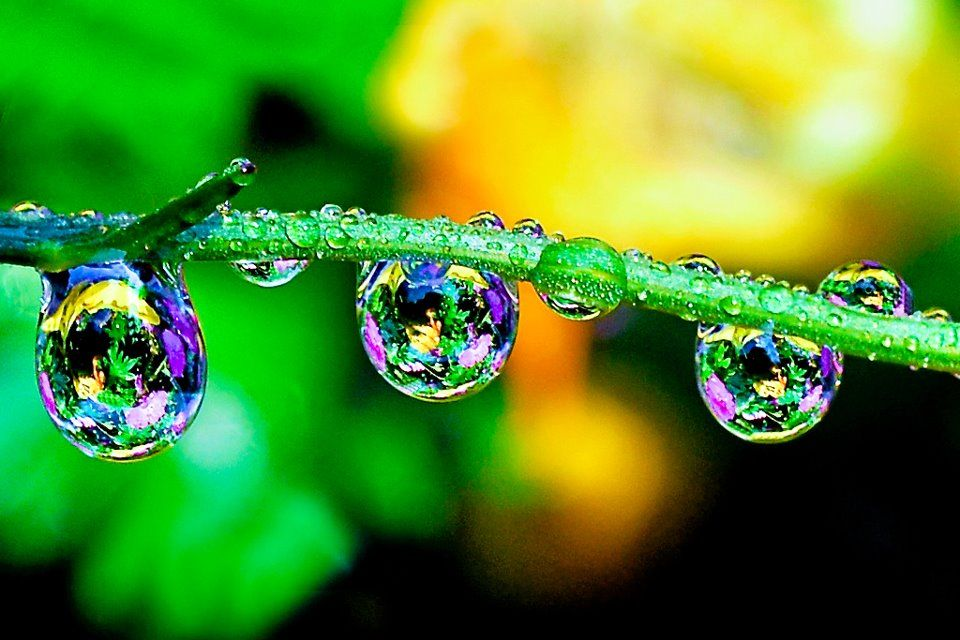 Rainbow water droplets