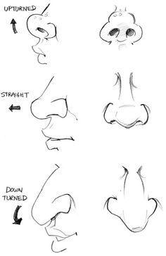 Narices Perspectivas Dibujo Nariz Dibujos De Caras Caricatura