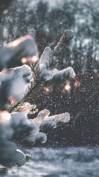 Wallpqaper Lockscreen Inverno Winter wonderland Pinterest