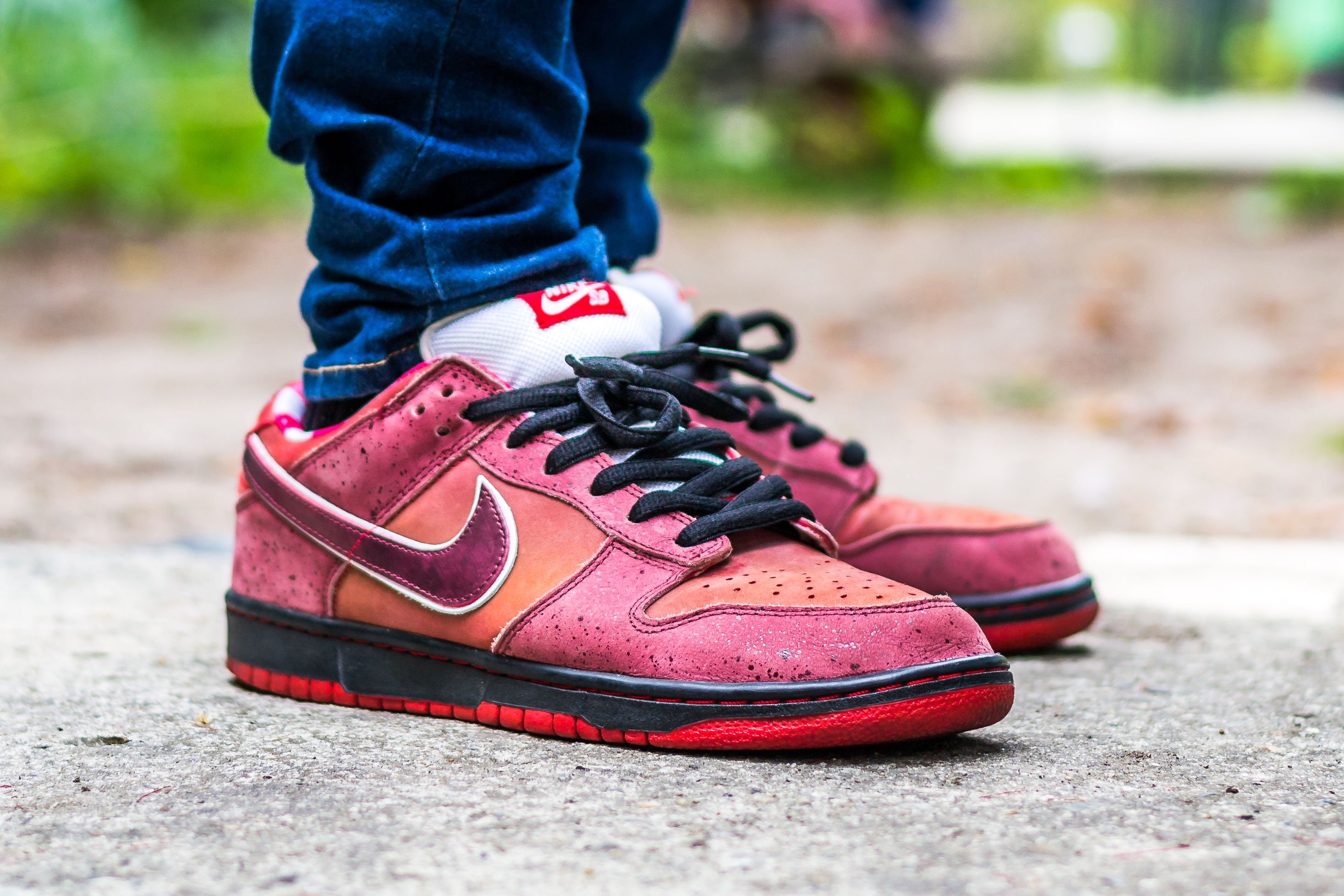 3ef8b93f4c4e2b Click to see my video review of the Nike Dunk Low SB Red Lobster and find  out where to buy a pair yourself