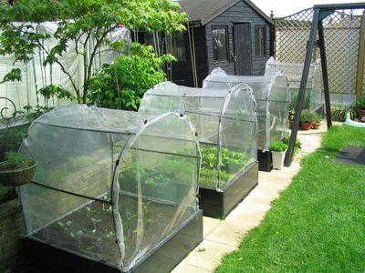 Insect Netting  http://littlecottonrabbits.typepad.co.uk/my_weblog/garden_stuff/page/2/