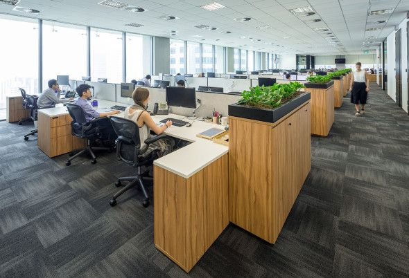Schroders Singapore Schiavello Office Building Custom Planters Office Space