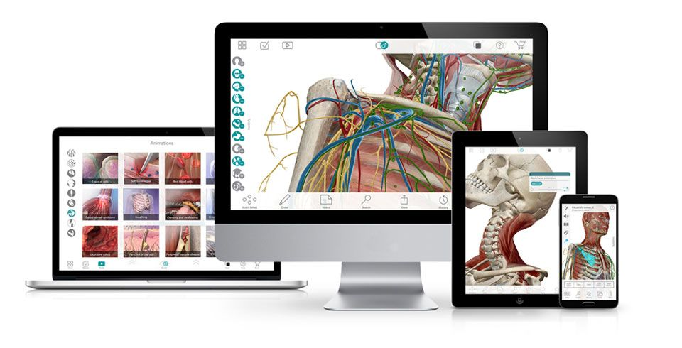 Anatomy Apps To Enhance Your Homeschool Science Visible Body Human