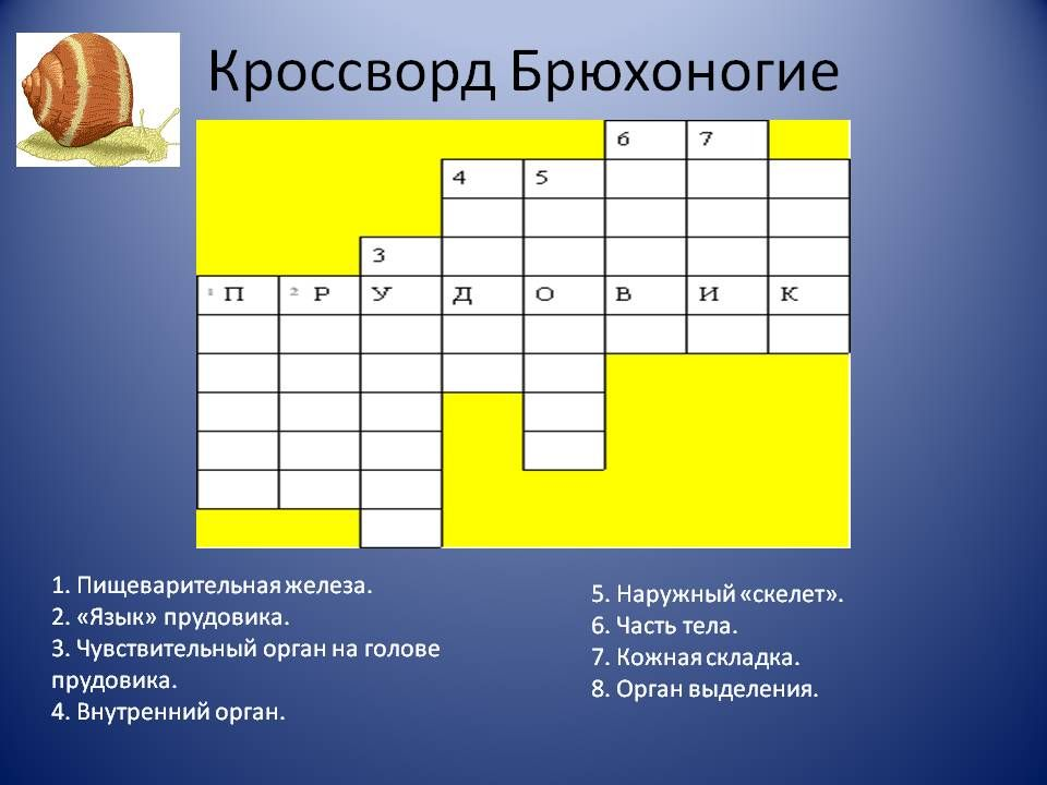 гдз in touch 3 workbook