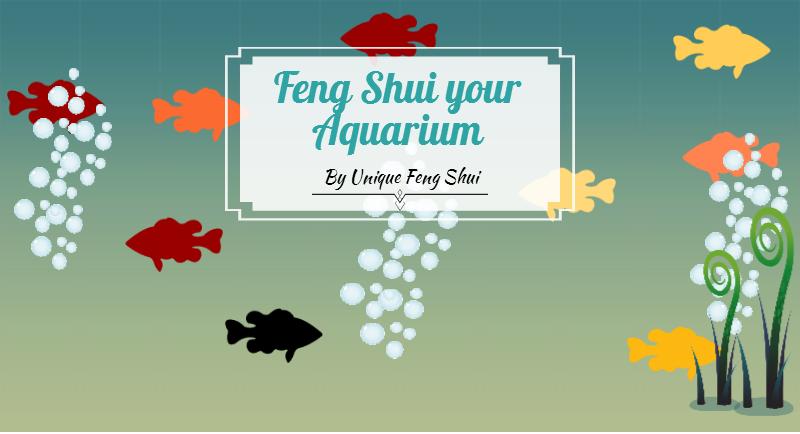 Unique Feng Shui 5 Steps to Feng Shui your Aquarium