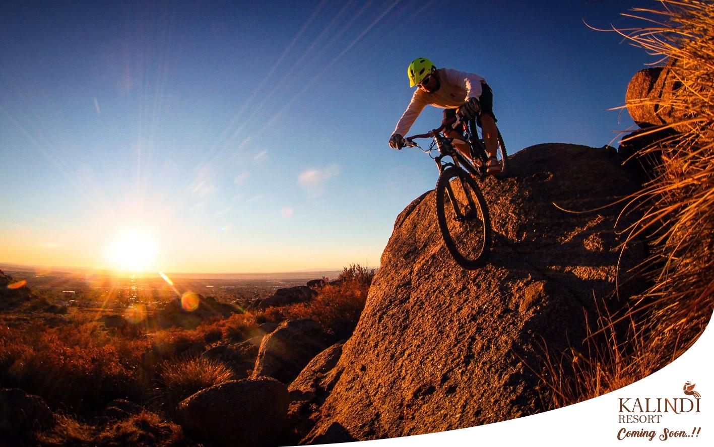 Lets Roar High Best Mountain Bikes Mountain Biker