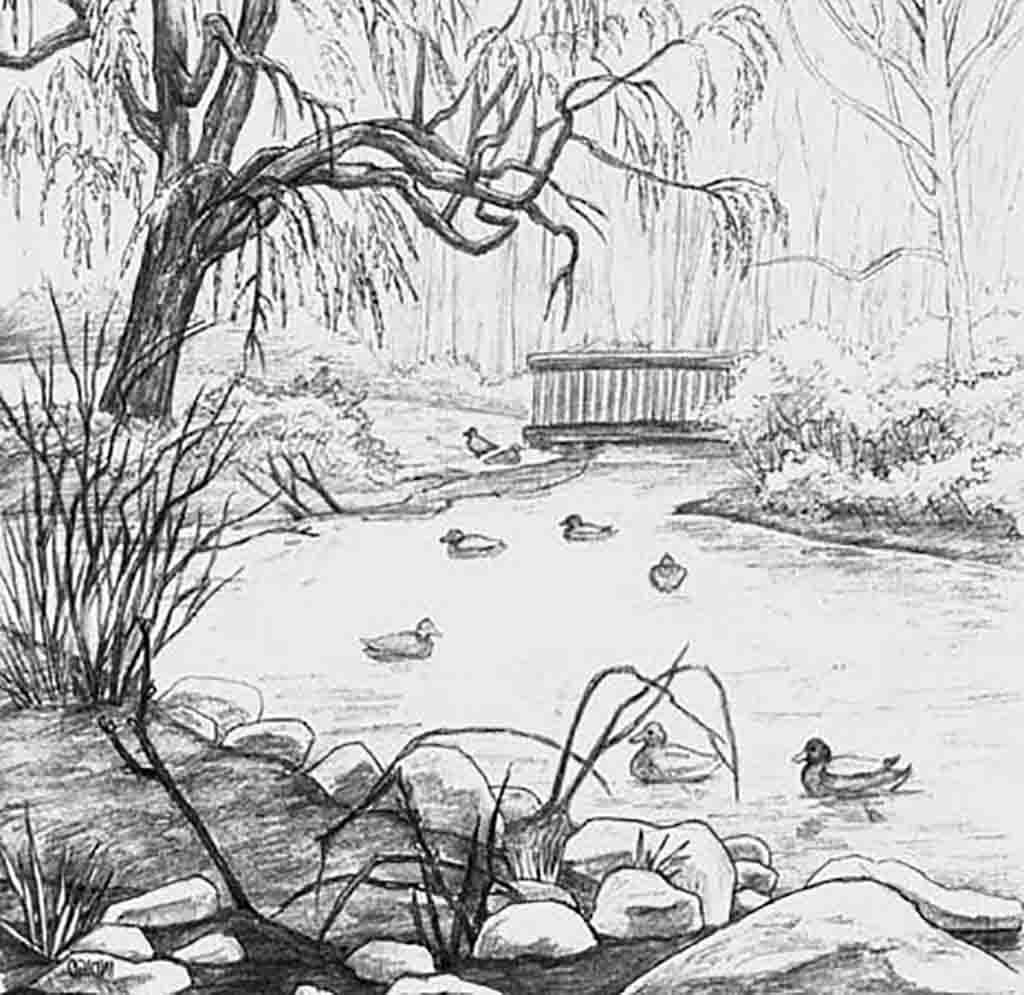Image Result For Black And White Scenery Drawing