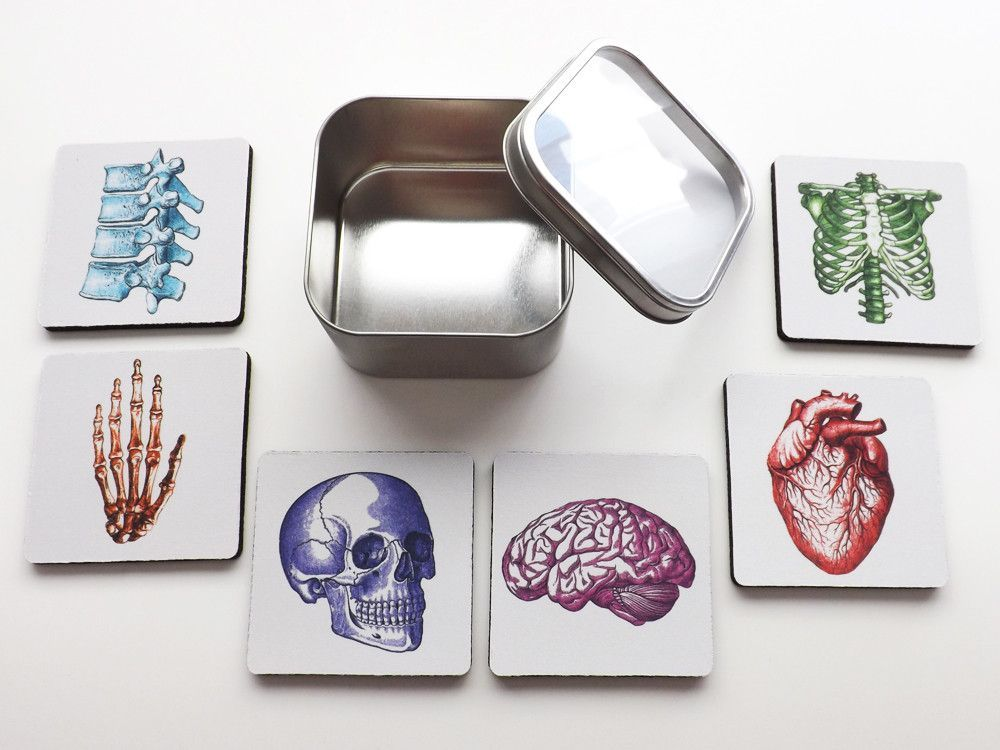 Nursing School Graduation Colorful Anatomy Coasters Gift Set physician assistant doctor medical student