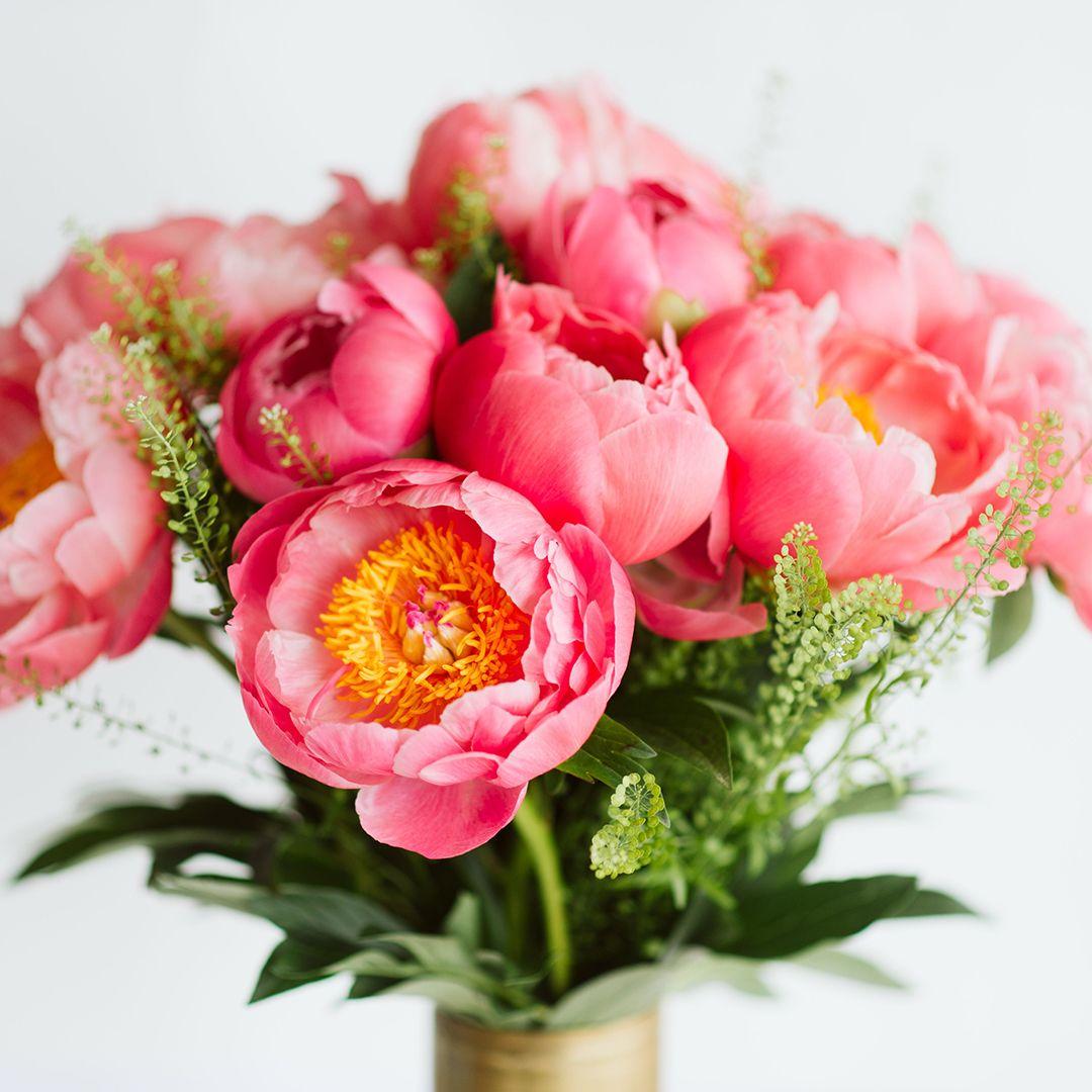 Livraison De Superbes Bouquets De Pivoines Pivoine De Chine