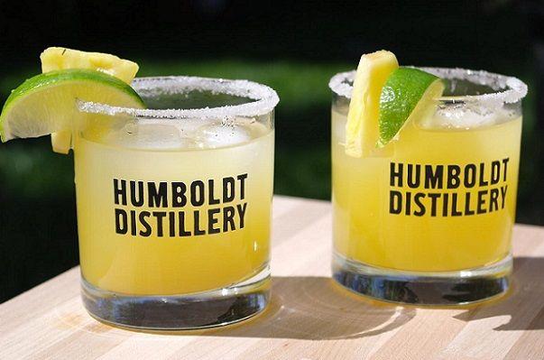 A fan favorite! The #pineappleexpress #pineapplecocktail #cocktailrecipe #cocktailideas #drinks #vodka #vodkadrinks #vodkapineapple #infusedvodka #hempvodka #organicspirits #craftcocktails #craftspirits #humboldtdistillery #humboldtsfinest #hempinfused #pineapple #hemp #cocktail #cocktailinspiration #easycocktail #sugarrim #pineapplejuice #partycocktails