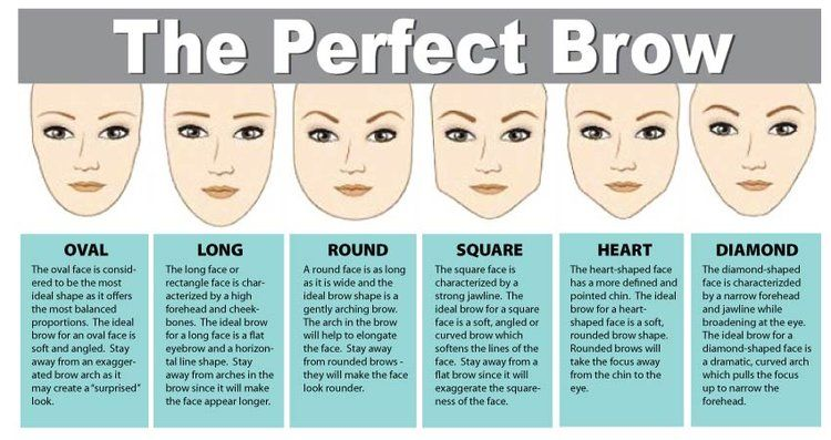 Image result for microblading map of eyebrows   Perfect ...