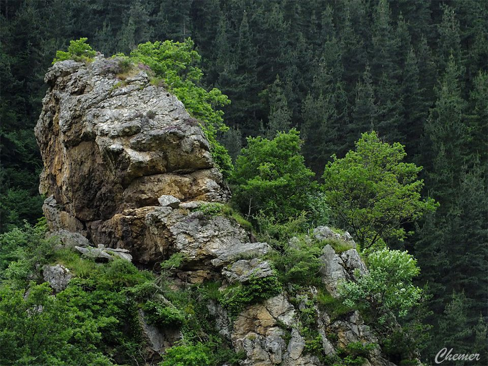 Hoces De Barcena Cantabria Spain Travel Spain Travel Spain Ecosystems