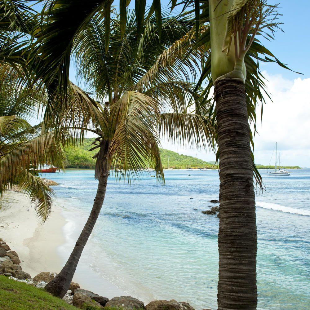 Private Island Beaches: 9 Best Caribbean Private Islands For The Ultimate Escape